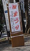 0326_9sakura3