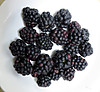 0724_0blackberry
