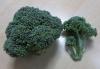 0122_10broccoli2
