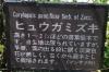 0310_10hyugamizuki1