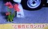 1013_17higanbana