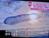 1130_21anaakigumo3